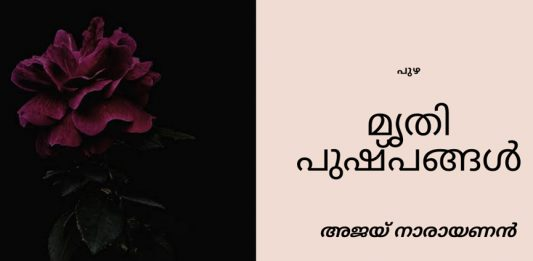 Malabar News poem