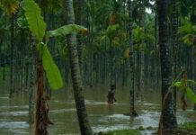 palakkad-rain-Malabar-News