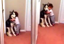 Dog And child_2020 Sep 10
