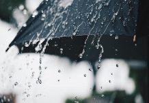 MalabarNews_Rain