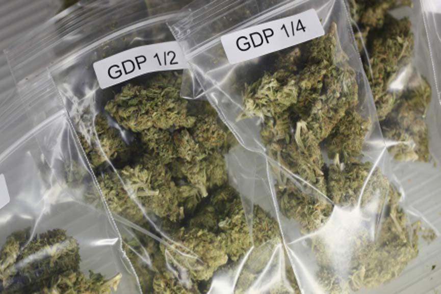 cannabis caught