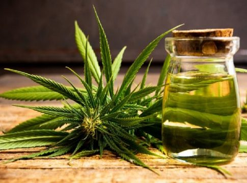 MalabarNews_marijuana