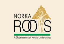 norka roots