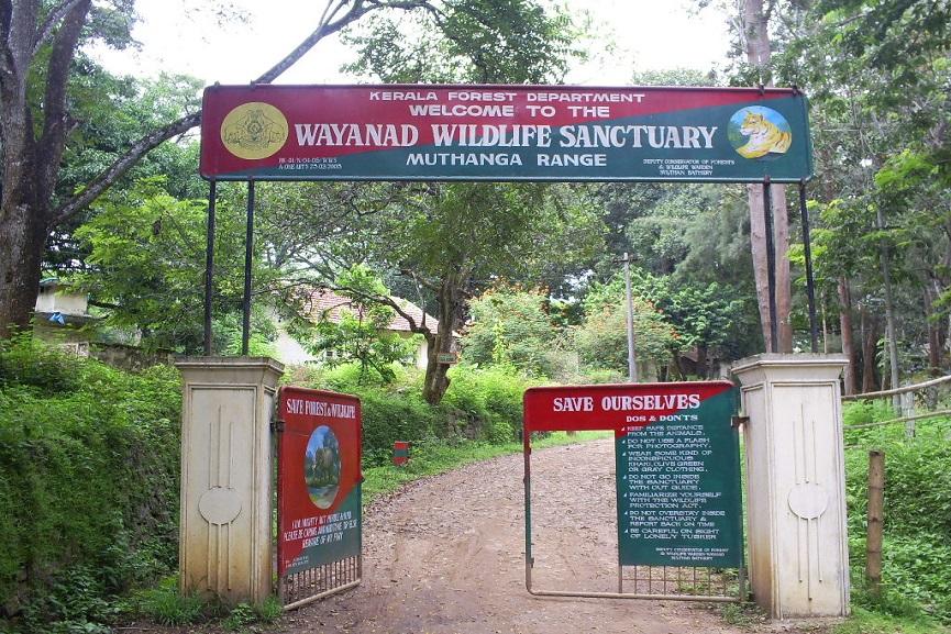 wayanad news