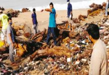 Beypore Coastal Cleanup; More than 200 SYS activists attended