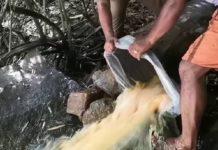 wash_seized