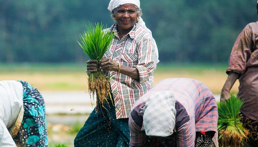 Harithakeralam Photography Award _ Consolation Prize Photo of Gireesh VC