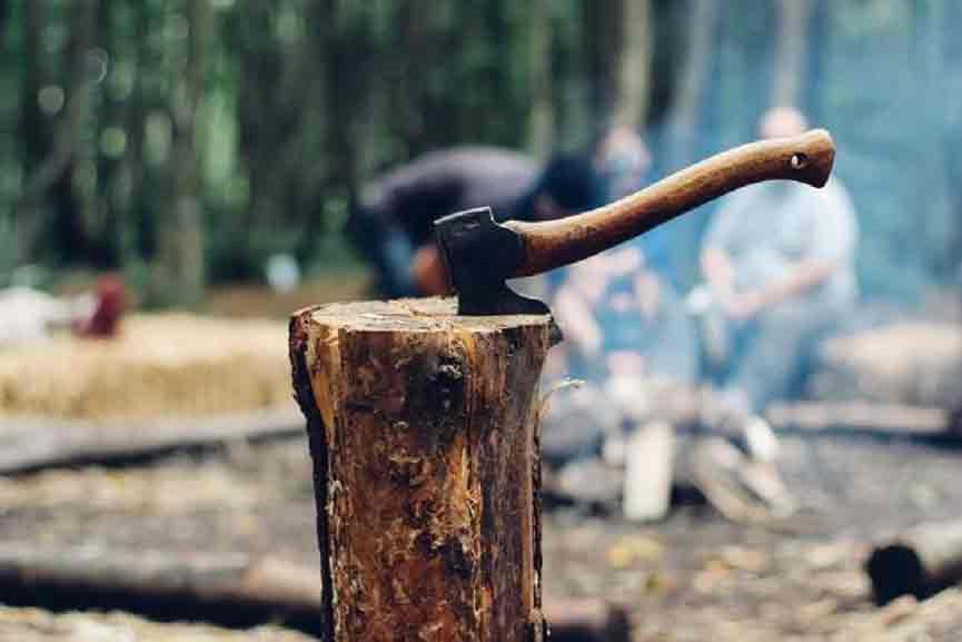 Wood-Smuggling case