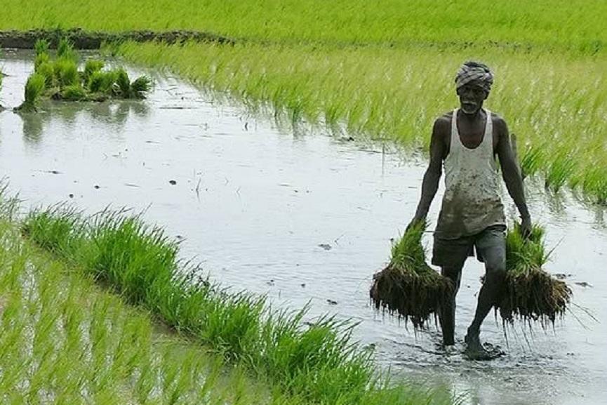 New Circular for farmers