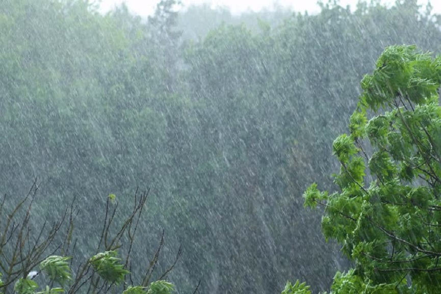 Chance of heavy Rain in the State