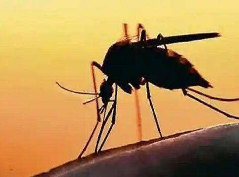 Zika in kerala
