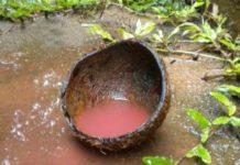 Red Rain In Kozhikode