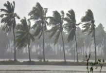 gulab cyclone-kerala heavy rain