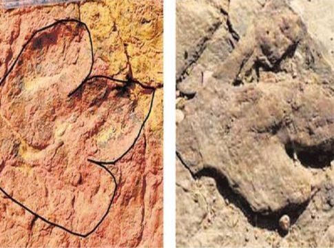 Dino-footprints