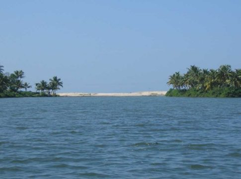 cleaning-of-ashtamudi-lake