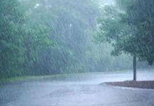 Rain in wayanad