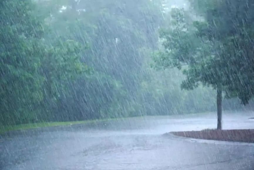 Heavy Rain Continues In The Forest Areas Of Kozhikode