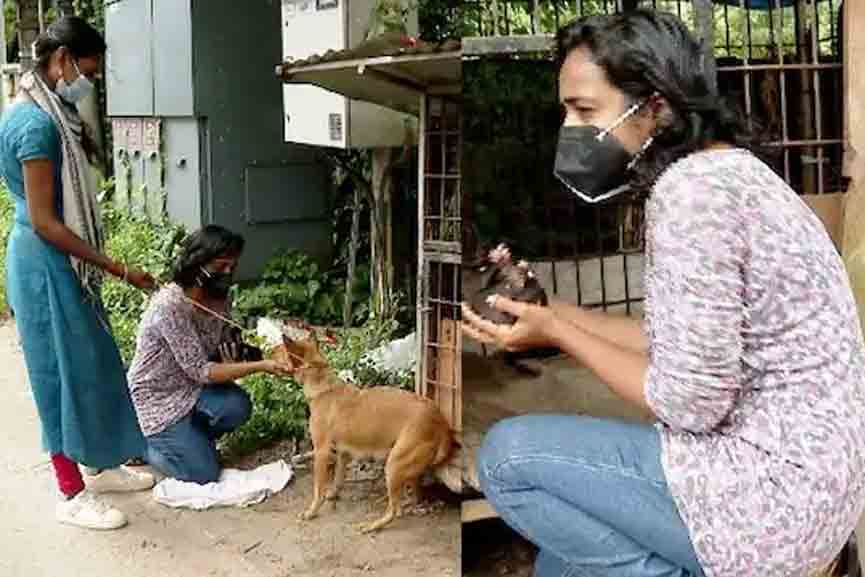 Two women rescue a stray dog