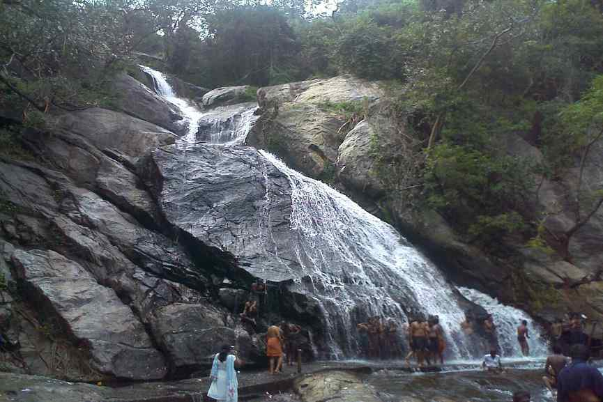 Tourists Banned In Aliyar Monkey Falls